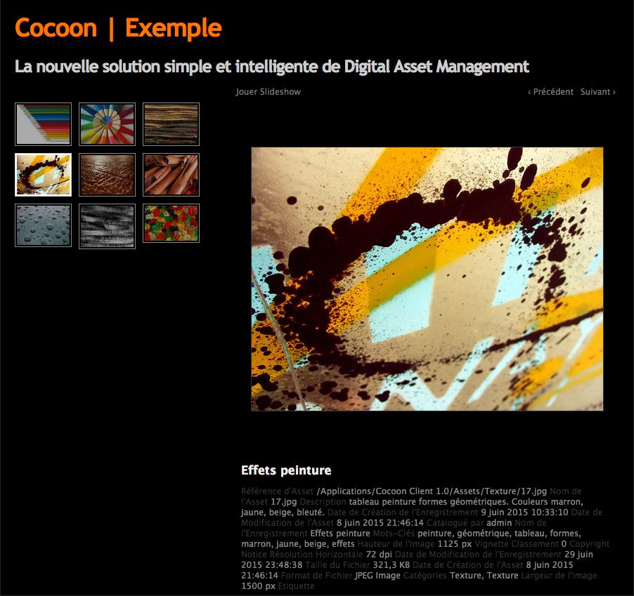 coocoon-dark